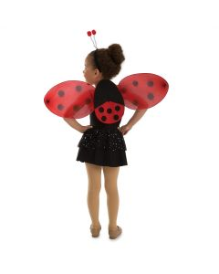 Lady Bug Accessory Set